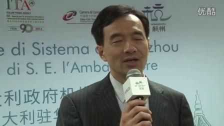 意大利驻华大使谢国谊参加新的杭州签证中心