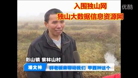 中国贵州独山鑫蕊水苔种销农民专业合作社被评选为国家级试验合作社