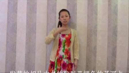 《光阴的故事》王海力手语教学完整版