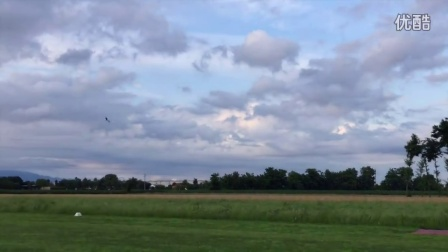 First flight with Align 3 Blades Head on T-Rex 700 - Luca Pescante