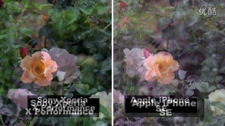 Phone6s和Xperia-X-Performance  的摄像效果对比