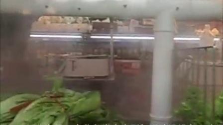 辽宁某蔬菜超市保鲜喷雾加湿器安装效果