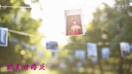 靳幽洋&陈媛媛2016.06.30凯美特婚庆