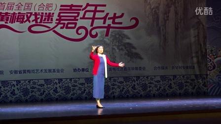 黄梅戏嘉年华9