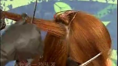 发型师技能培训 第九集 美发的漂、染技术_标清