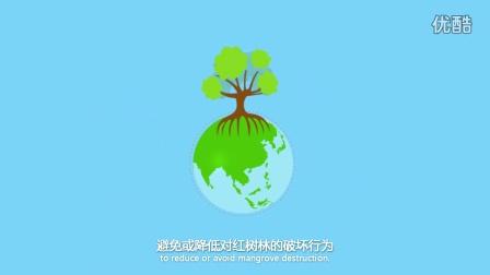 CMCM原创视频—红树林预警机制