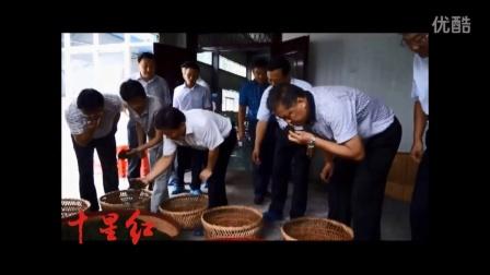 市委书记周霁深入星梦茶业公司调研