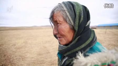 土地母亲计划-阿坝牦牛肉 川西之子