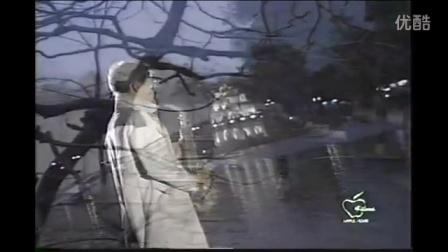 越南歌曲理想情人Người Yêu Lý Tưởng - Tài Linh_ Tú Châu _ Video4dakm