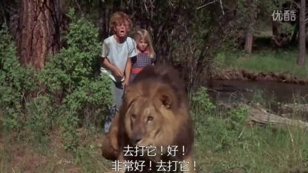 两个小孩在河边玩,黑熊出现多亏了那头狮子