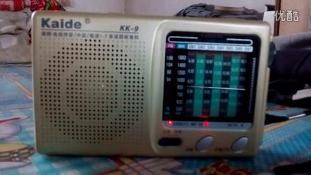 凯隆牌九波段电视伴音收音机!