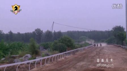 金盾马术视频新闻:2016年9月17日北京马协速度赛马第三站在北京天赐圣泉马术俱乐部赛马场举行。