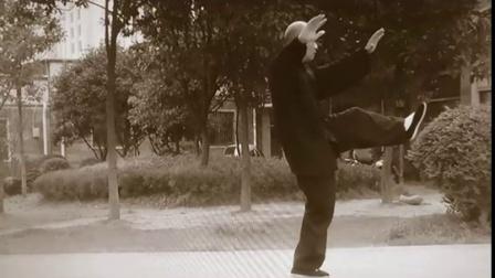 传统杨氏太极拳28式