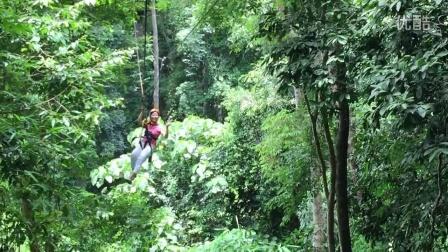 泰国丛林穿梭