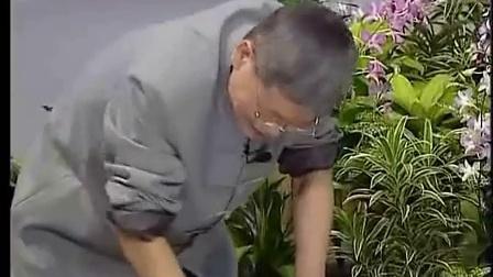 2010原始点新加坡讲座14-荐椎部原始点_标清