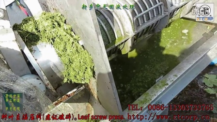 新鲜树叶压榨机,植物压榨机,树叶榨汁机,螺旋榨汁机,分离设备