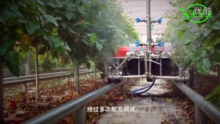 山东永大肥业有限公司,宣传片制作,宣传片拍摄,视频拍摄,视频制作,星门影视