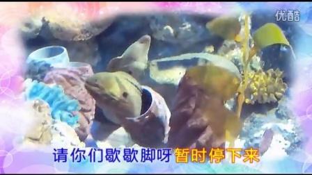 南金鹰海洋馆(MTV)1