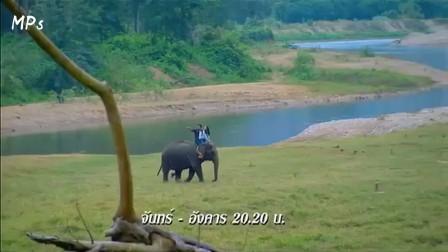 【MPs字幕组】泰语中字《绿野心踪》预告2