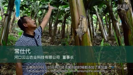 杰士农科理疗达人暨2015年全球瓦拉格罗最佳种植者——常仕代