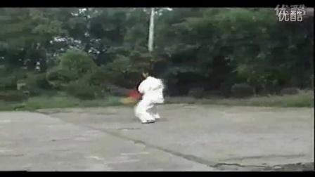 基础太极拳教程下载_购买太极拳剑标准教程