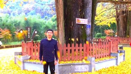 杭州西湖游