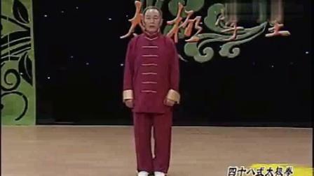 陈思坦32式太极拳视频分解教程_陈氏太极拳老架二路动作分解张东武_陈氏太极拳13式教程