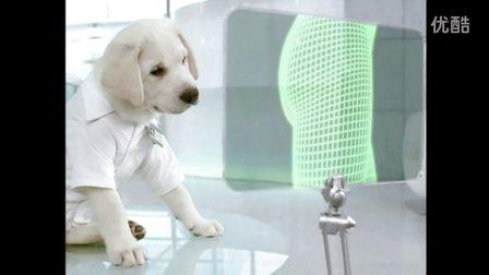 Cottonelle Institute Cute White Puppy 2009 TV Commercial