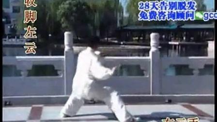 武当太极拳十三式实战_太极拳13式教学视频_太极拳教程吴阿敏