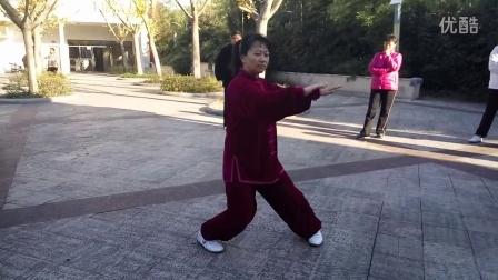 传统杨氏99 教学(八) 演练
