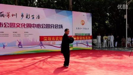 深圳市公园文化节上演陈式太极精彩表演