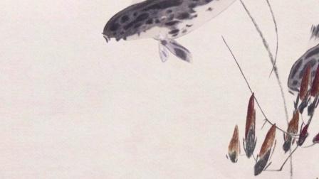 扬州漫观宣传小视频-鱼
