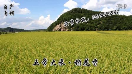 五常大米直供为你,自产自销唯妙唯俏。