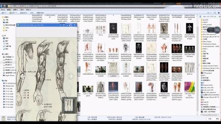 zbrush人体肌肉模型制作四影视后期maya基础模型【云图动漫学院】