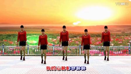 郴州刘玫广场舞《歌在飞》吉特巴原创正背面演示