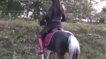 骑小马137