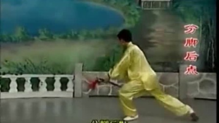 【017】42式太极剑【背面 冯  梁祝 4.03】