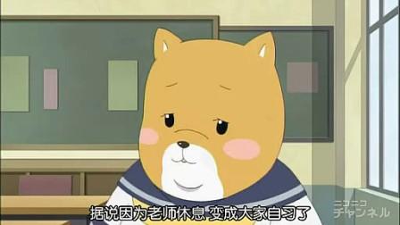 柴犬子 02
