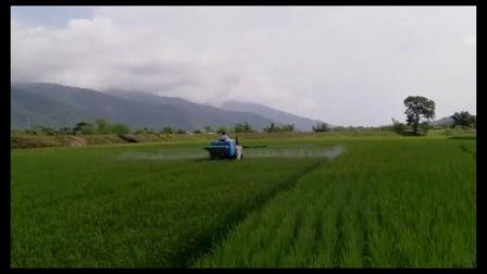 自走式水稻打药机