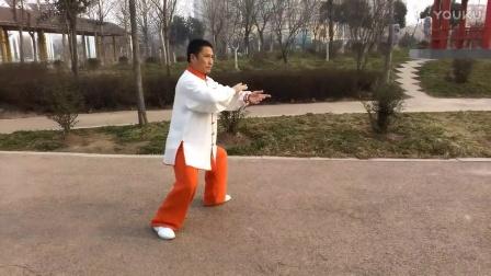 秦洪彬传统杨式太极拳二十八势