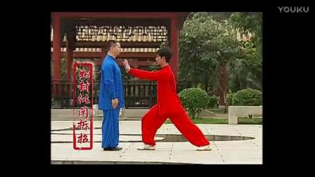 杨式太极拳  1-2段拆招分解