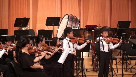 巴赫d小调双小提琴协奏曲(ss)