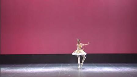 第7届桃李杯舞蹈教育成果展示民族古典舞蹈表演之《睡美人》大双人舞女变奏