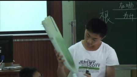 八年级科学优质课展示《植物的茎》浙教版_陈老师.