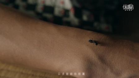 田馥甄-灵魂伴侣(官方版MV)