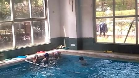 学习自由泳