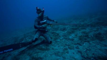 自由潜鱼枪射鱼-- Carolina Blues