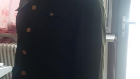定兴县北田村朱连才演唱《金沙江衅》选段:高原风景极目望