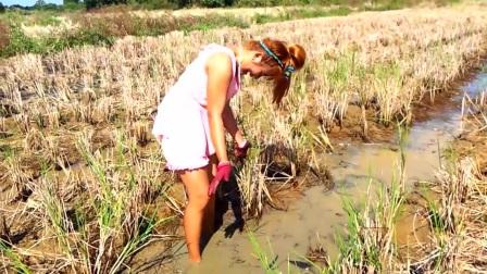 农村女孩野外游玩,发现水沟异样,走近后,高兴坏了