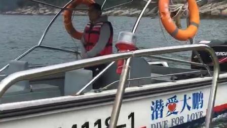 深圳南澳发现死海豚!
